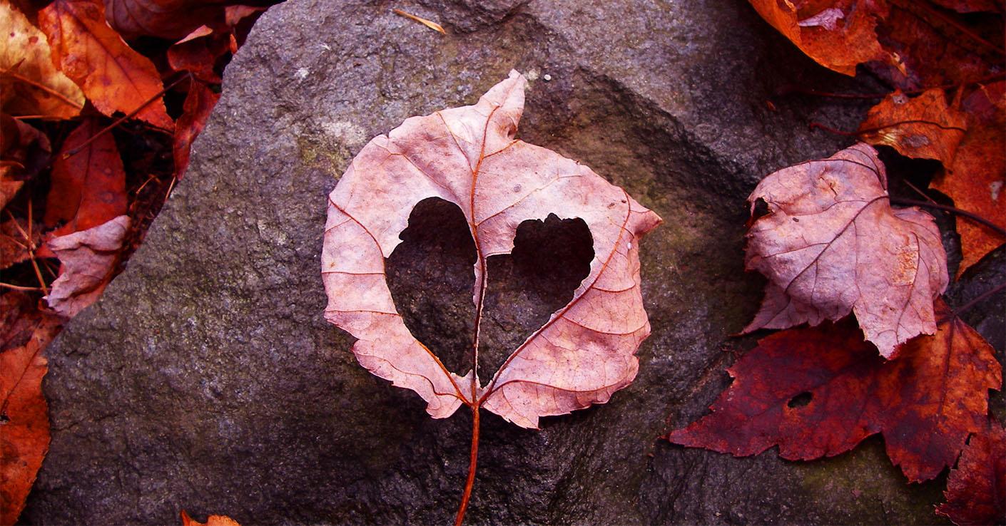 Гороскоп на сентябрь козерог любовь